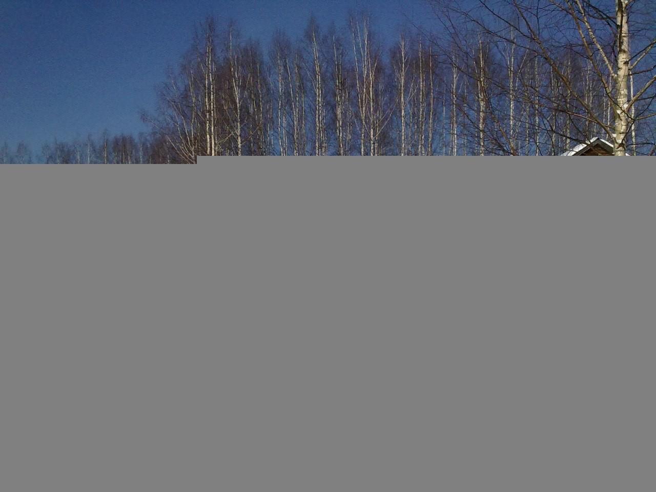 Лебедь, семейно-оздоровительный центр - №19