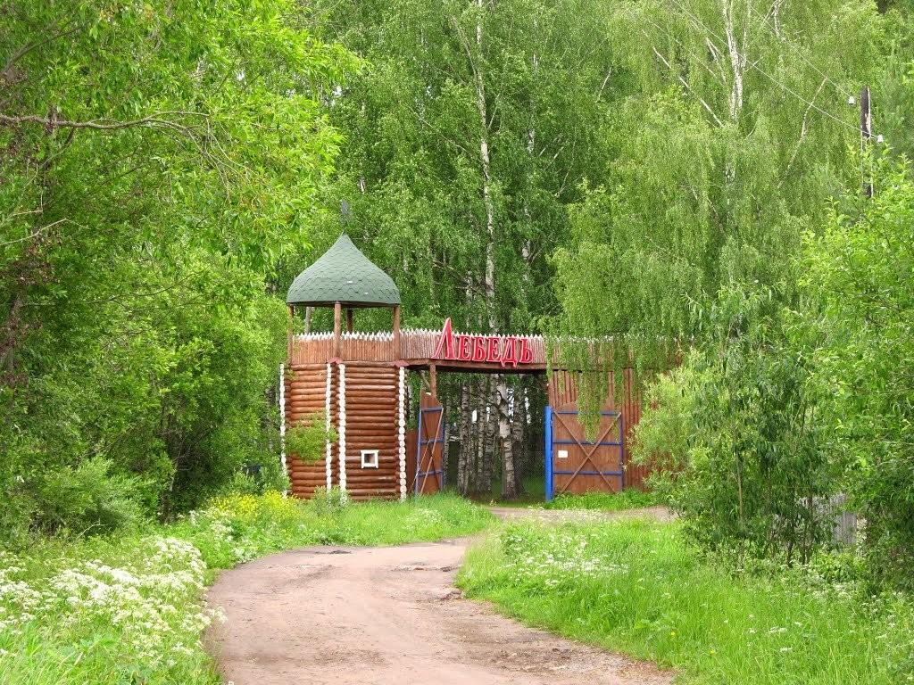 Лебедь, семейно-оздоровительный центр - №81